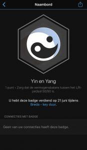 Yin Yan badge